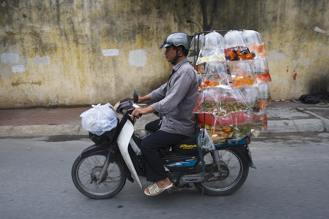 Находчивые вьетнамские мотоциклисты-33