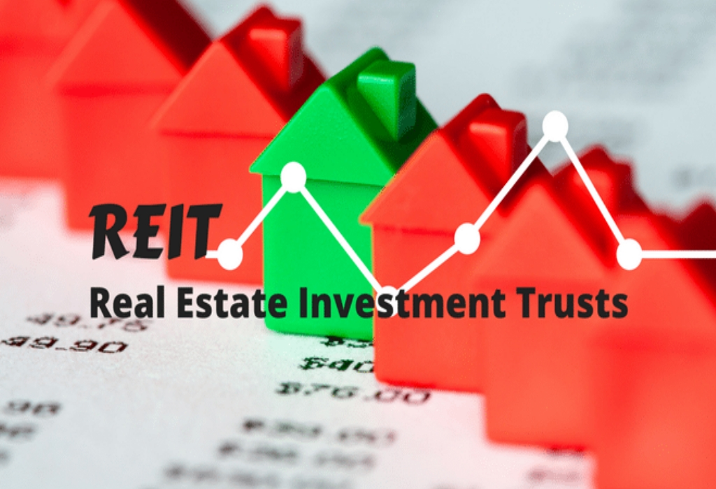 Real Estate Investing Realtors