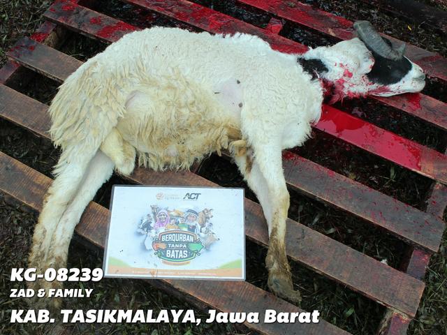 Zad-and-Family-Tasikmalaya-Jawa-Barat-KG-08239.png