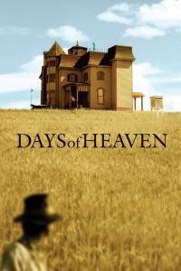 მკის დღეები DAYS OF HEAVEN