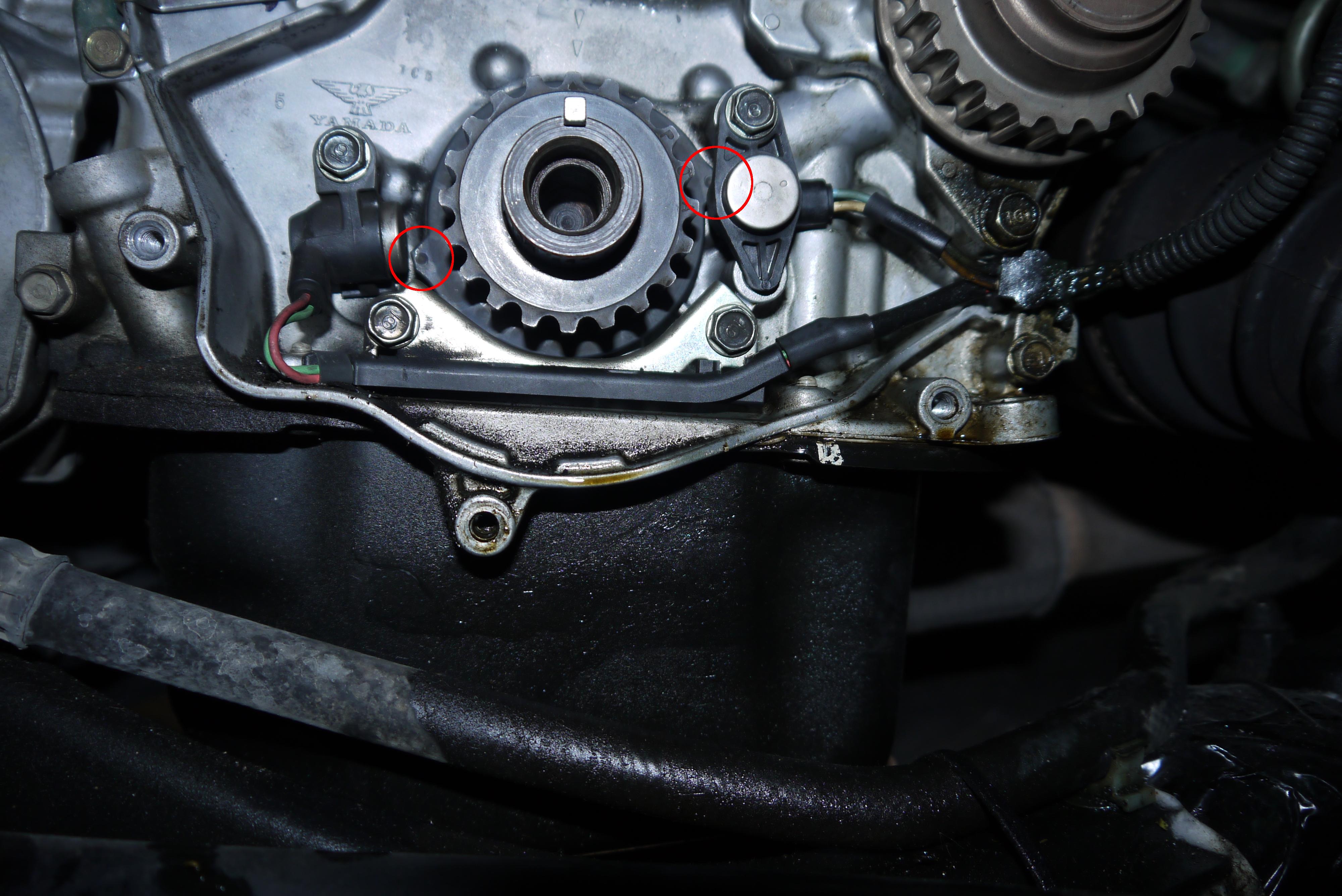 P1260549.jpg
