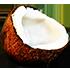 https://i.ibb.co/D4HMT2s/coconut.png