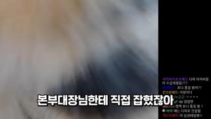 DP-1-1-screenshot