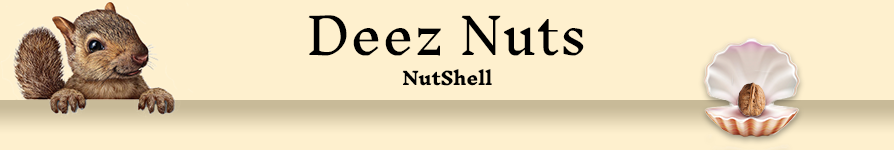 banner-Nut-Shell.png