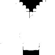 AMS-Favi-White