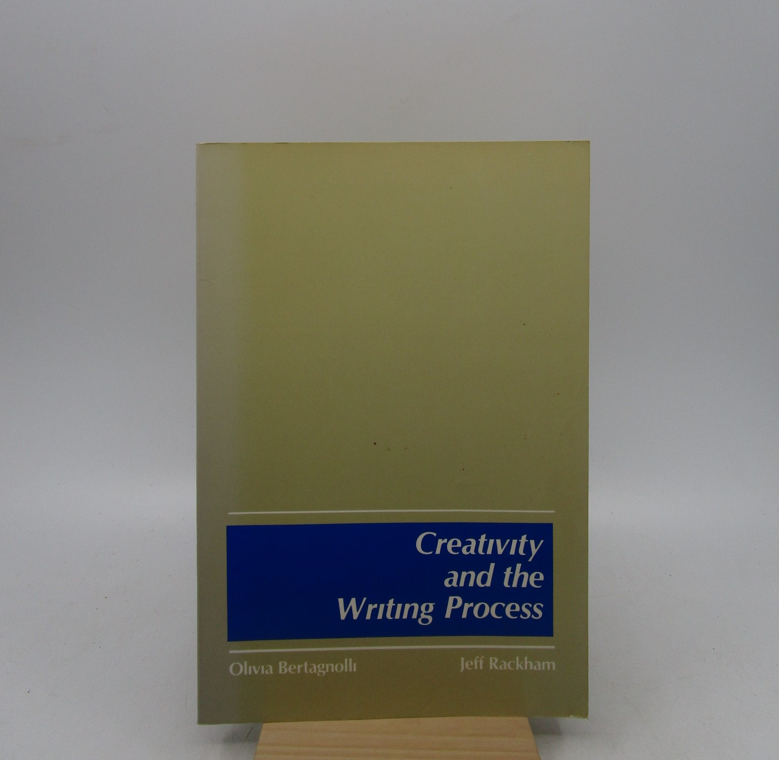 Image for Creativity and the Writing Process