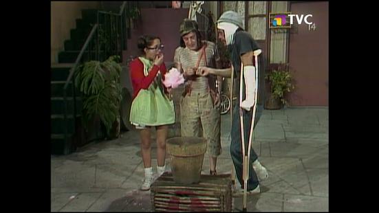 maceta-y-algodones-1977-tvc5.png