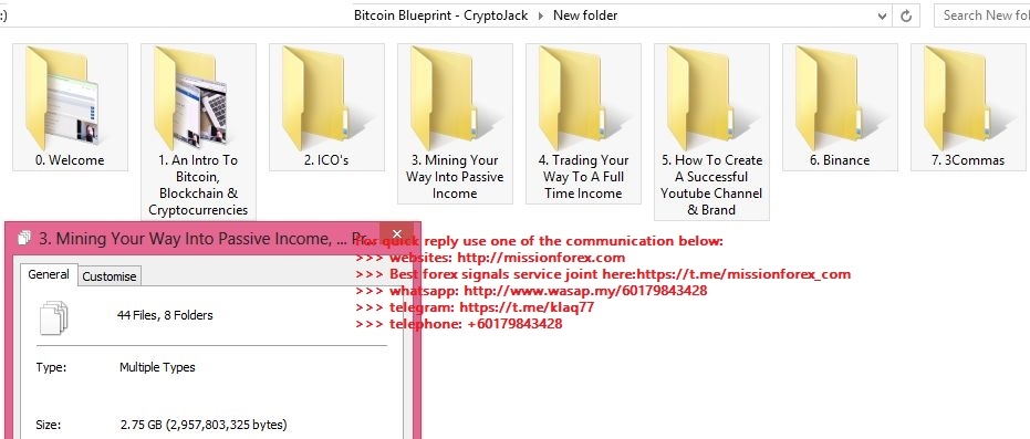 Bitcoin Blueprint - CryptoJack Missionforex.com