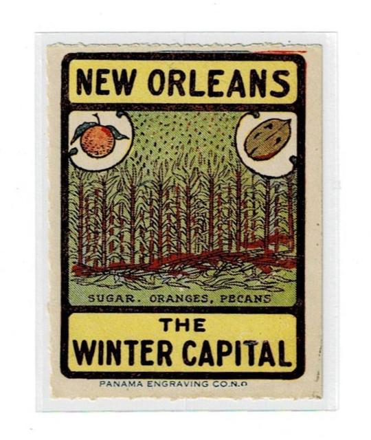 New-Orleans-Cinderella