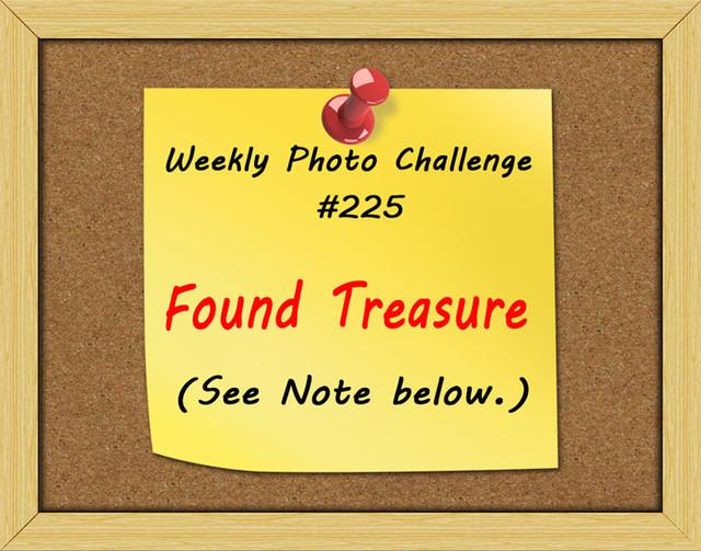 WPC-225-Found-Treasure