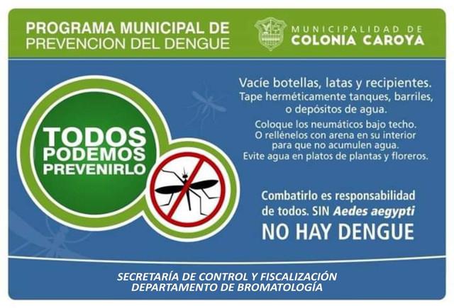 dengue-folleto
