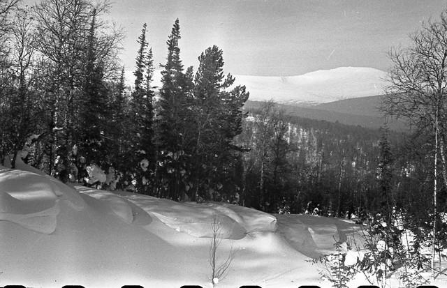 Dyatlov pass 1959 search 45