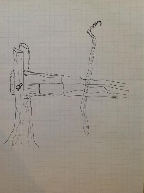 Niskaksi kaadettu puunrunko