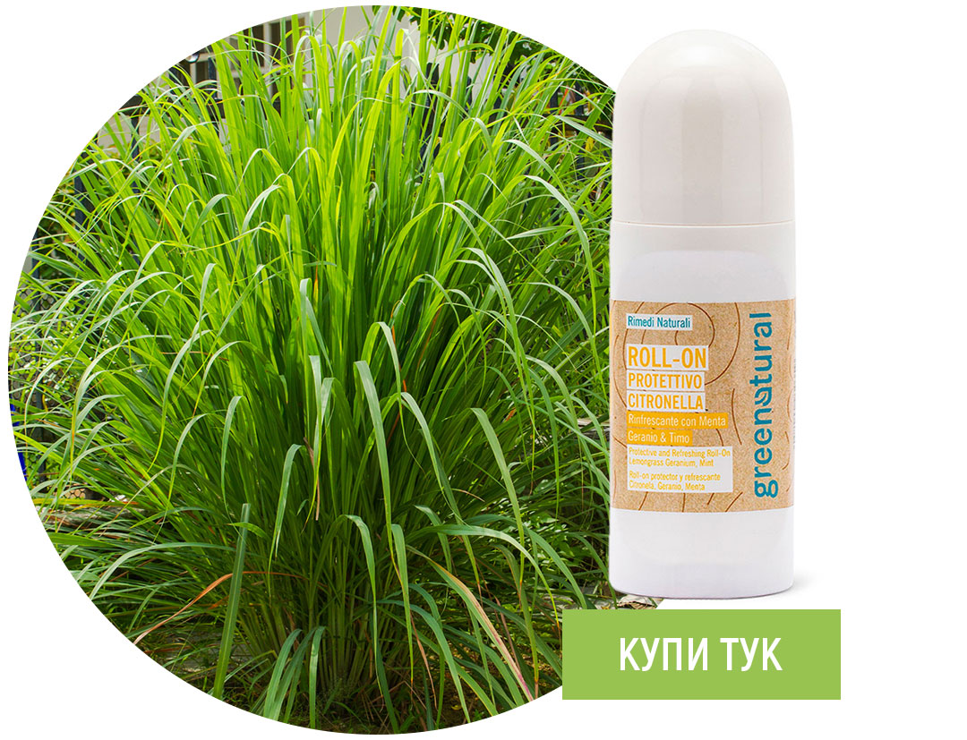 Greenatural-Roll-on-repelent-essential-oils