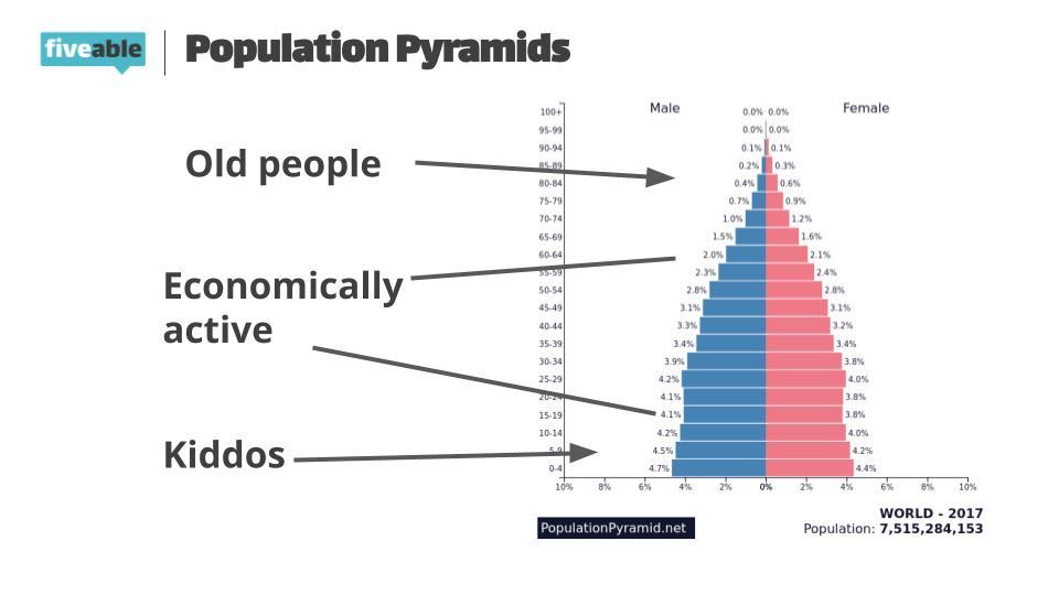 https://i.ibb.co/DY6WyMd/AP-Human-Geo-Population-Pyramids-1.jpg