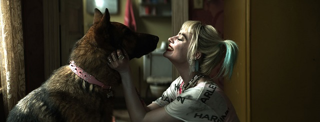 Harley Quinn Birds Of Prey Before And After Vfx Images Reveal How Harley S Pet Hyena Was Created