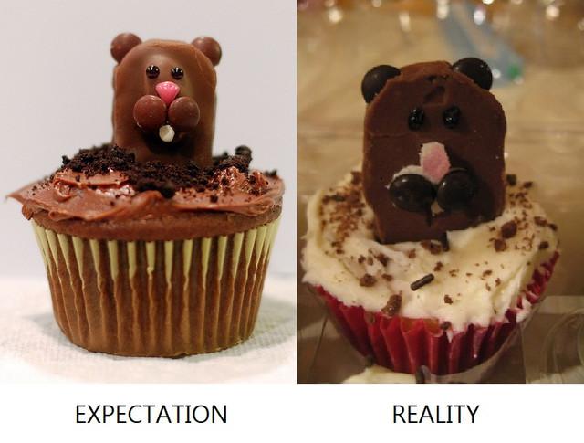 expectation-reality.jpg