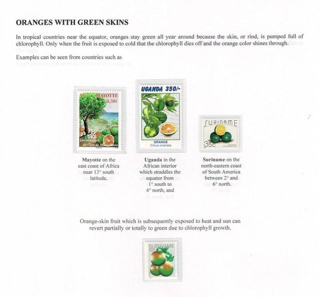 Oranges-Green-Skin