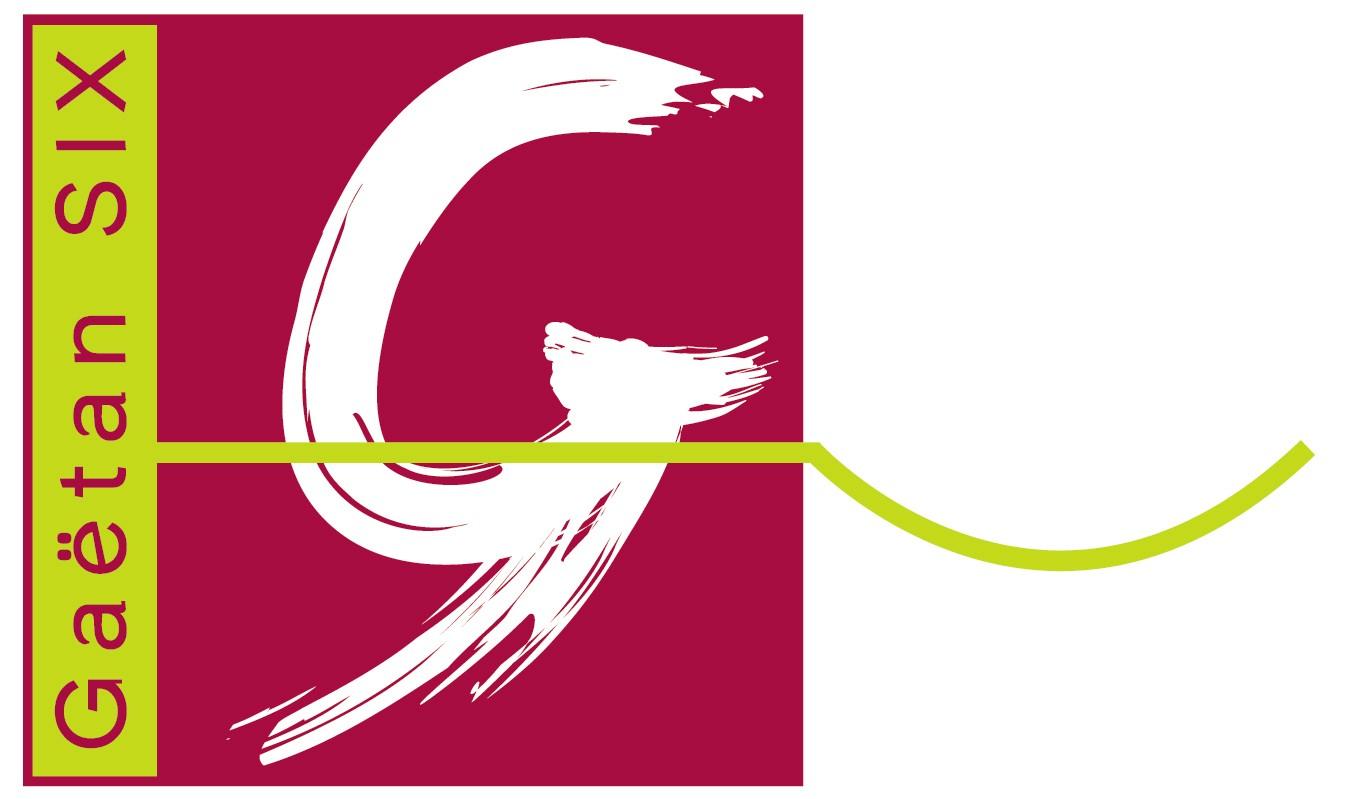 GS-Logo-2006-FIN-CARRE