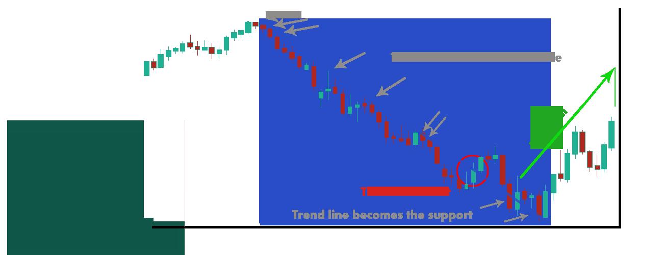 Technical-Analysis-Profiti-Xpedia