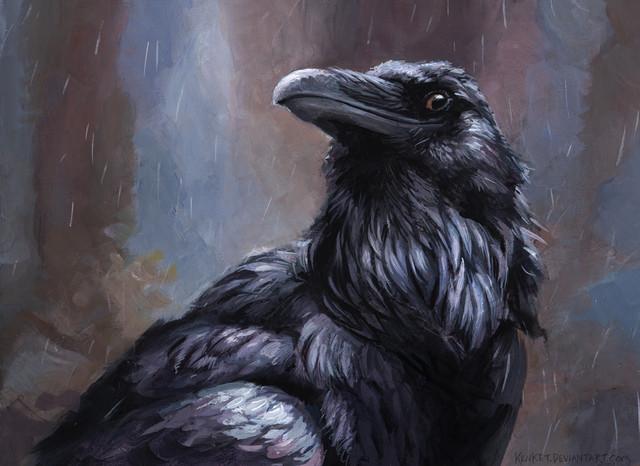 Raven-2.jpg