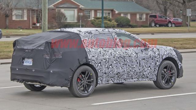 2021 - [Ford] SUV compact  - Page 2 B3-C171-B2-93-A1-4-E37-B0-B4-E32-A5283-D947