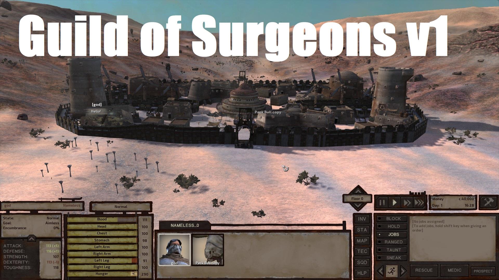 Guild of Surgeons / Гильдия хирургов