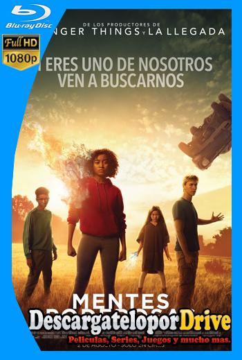 Mentes poderosas (2018) [1080p] [Latino] [1 Link] [GDrive] [MEGA]