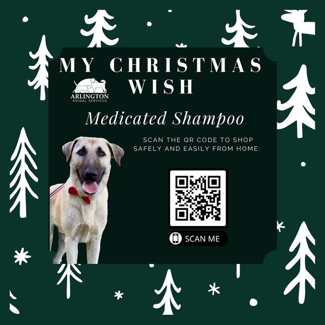 Animal-Services-2020-Angel-Tree-062.png