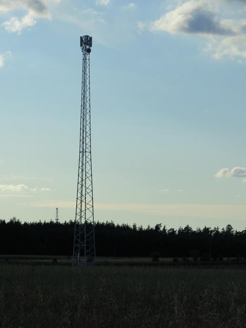 IMG-0864