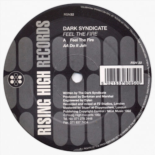 Download The Dark Syndicate - Feel The Fire / Do It Jah mp3