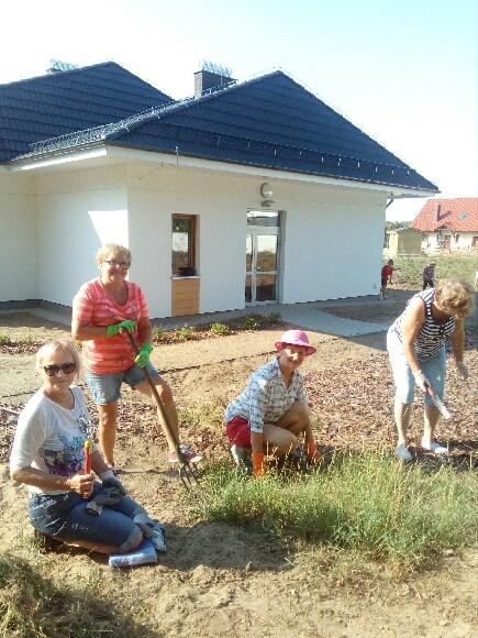 Porz-dkowanie-ogrodu-27-sierpnia-2019-1