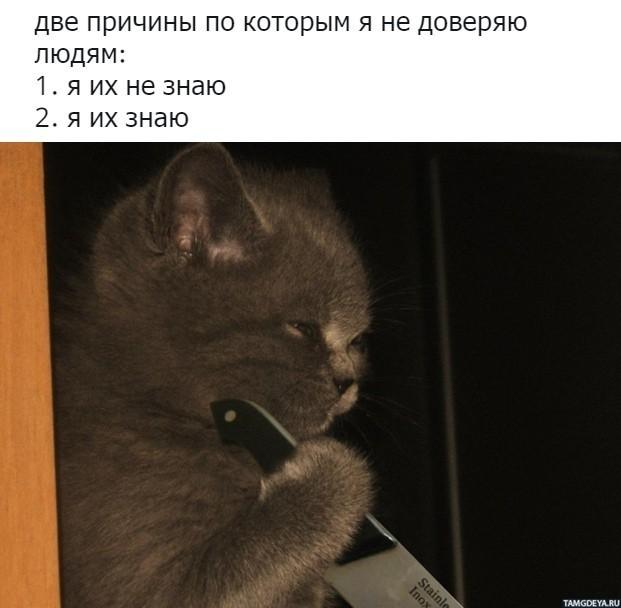 155497884616807403.jpg