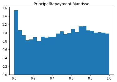 Principal-Repayment-Mantisse