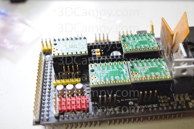 DSC 0302