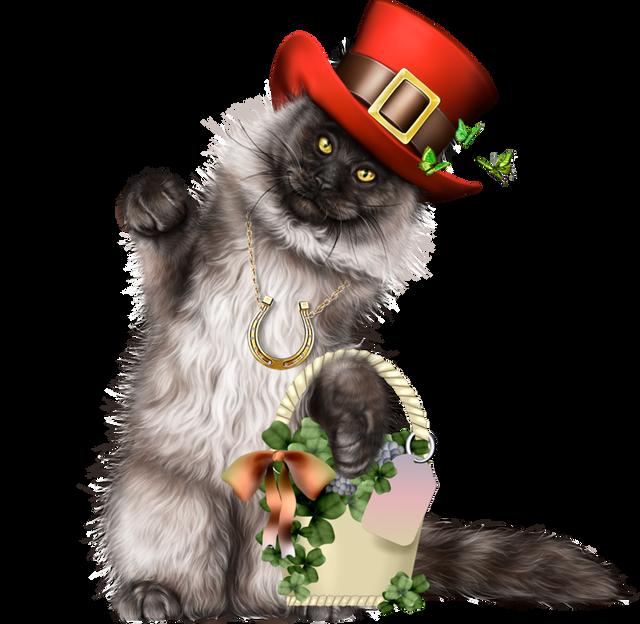 Leprechaun-Cat-With-Beer-46.png