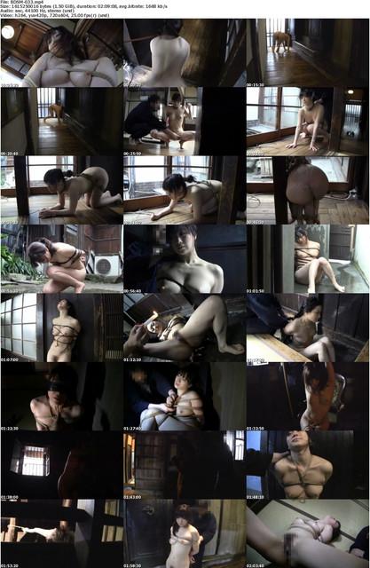 BDSM-033-s