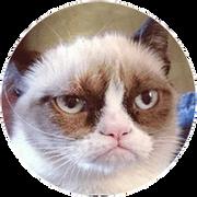 grumpy-2