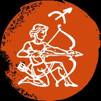 icon-rashi-sagittarius-dhanu