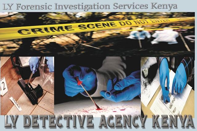 LY Private Investigators