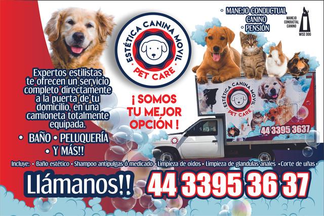 LOGO-ESTETICA-CANINA-PET-CARE