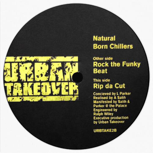 Download Natural Born Chillers - Rock The Funky Beat / Rip Da Cut mp3
