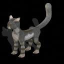 Pack de criaturas reales Gato-andino