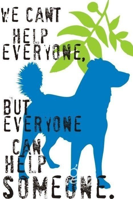 Save animals! show humanity
