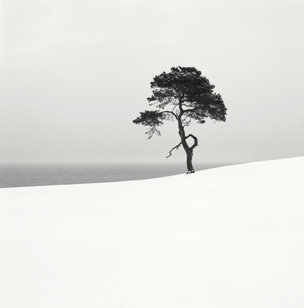 cherno-belye-peyzazhi-shvedskogo-fotografa-Hokana-Stranda 13