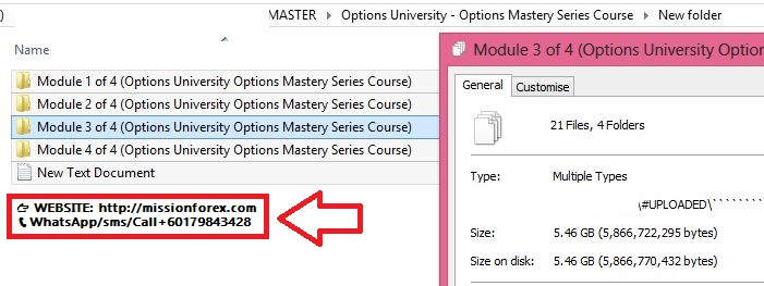 Options University - Options Mastery Series Course