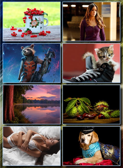 New Best Wallpapers Pack # 57