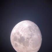 Taken-with-Night-Cap.jpg