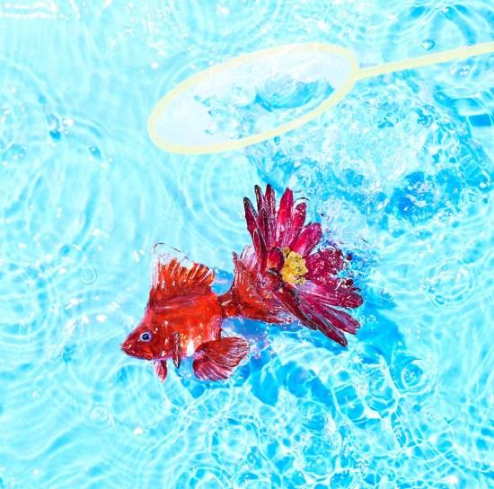 [Album] KANA-BOON – Aster