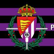 flag-462-2